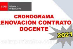 cronograma de Renovación Contrato Docente 2021