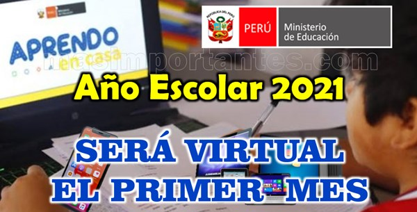 Año Escolar 2021 será virtual el primer mes
