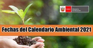 Fechas del calendario ambiental 2021