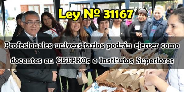 Ley Nº 31167 Profesionales universitarios ejercerán carrera docente