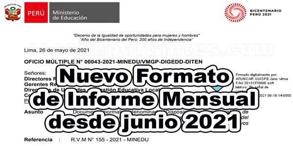 Nuevo Formato de Informe Mensual 2021