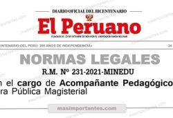 cargo acompañante pedagogico rm 231-2021-minedu