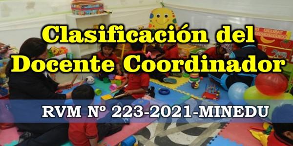 Clasificación del docente coordinador anexo 2 RVM Nº 223-2021-MINEDU