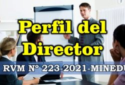perfil del director RVM Nº 223-2021-MINEDU